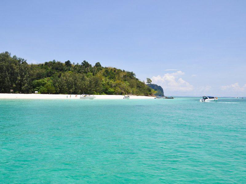 bamboo-islands